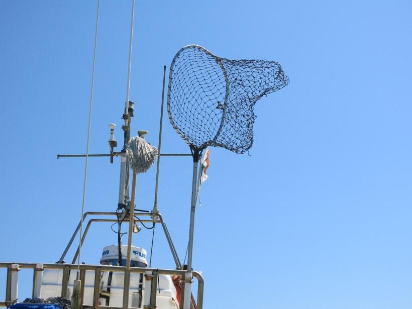 Das ist zwar nicht in Dublin sondern weiter im Süden, aber ich habe es sehr witzig gefunden, dass die beiden wichtigsten Instrumente auf dem Boot das Fischnetz und der Mop waren